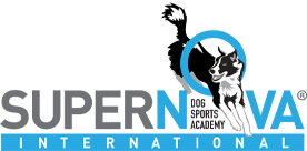 SuperNova International Dog Sports Academy